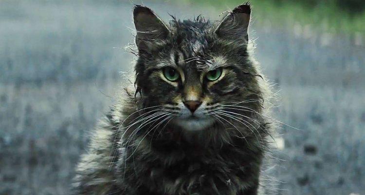 Pet Sematary 2019 Blu-ray Review